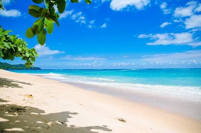 White Island / Whakaari