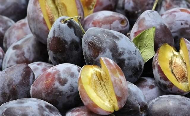 Frozeen Fruits